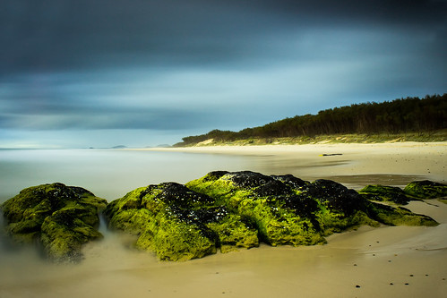 new trees cloud seascape beach water wales sunrise landscape moss sand rocks flickr waves south australia estrellas infocus highquality justified flickraward creativemindsphotography coppercloudsilversun blinkagain inspiringcreativeminds kindscliff