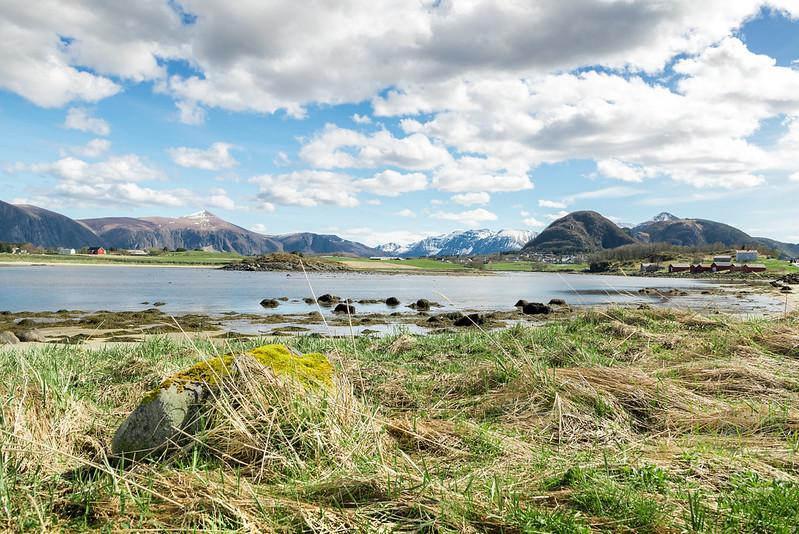 Fjord D80_4834