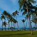 Landscape by Copamarina Beach Resort