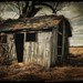 Shack web by Glynn Lavender