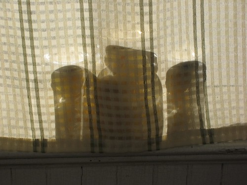 Lemons resting on a sunny windowsill.