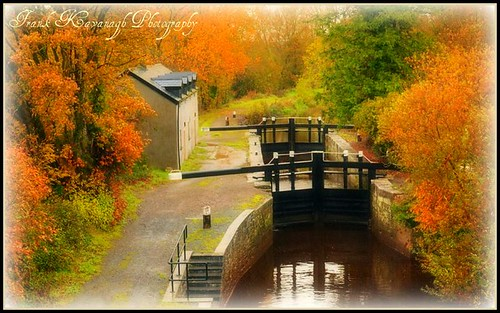 bridge autumn trees kilkenny ireland colour reflection nature leaves river reeds landscape canal gate sailing lock gates seasonal eire barge emeraldisle irlanda carlow riverscape irishphotographers boatlock kilkennyphotographers kilkennyphotographicsociety blinkagain frankkavanaghphotography