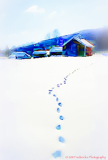 Lone Footprints in the Snow