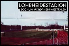 Hier empfängt gleich der #VfLBochum II den #BVB II.
