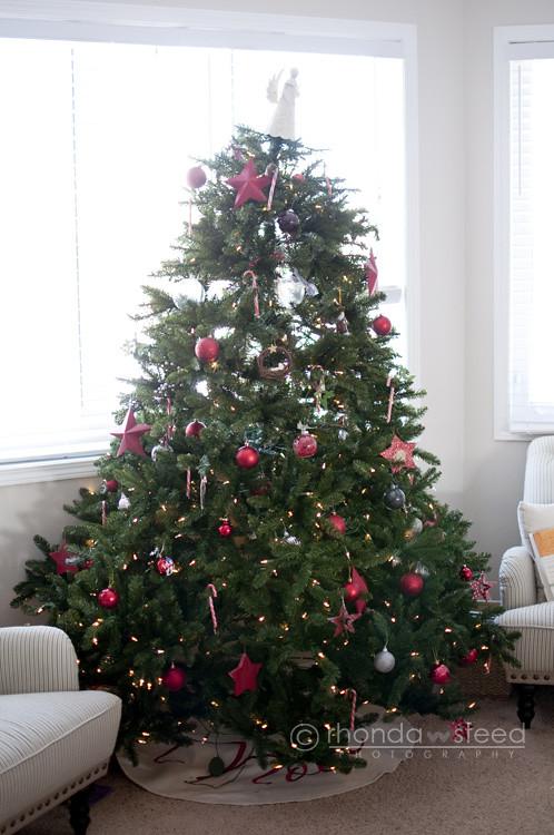 Christmas 2011 Tree
