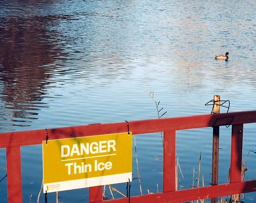 Danger: Thin Ice... Quack Quack