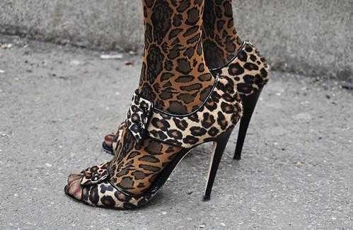 leopardsergiorossi6
