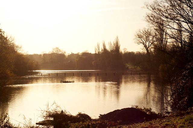 _DSC4424 - Hyde Park
