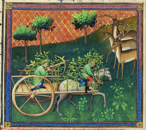 013-Le Livre de la chasse-1407- Gaston Phoebus- MS M. 1044 – fol. 103--detalle-© The Morgan Library & Museum