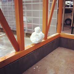 長男が人生始めて一人で作った雪だるまを一キロ歩いて持って帰ってきた証拠