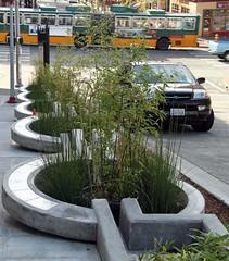 green infrastructure along a sidewalk (courtesy of SvR Design)
