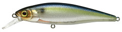 SG Threadfin Shad Squad