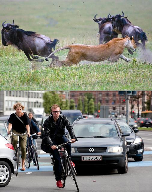 Copenhagen Bikehaven by Mellbin 2011 - 2964
