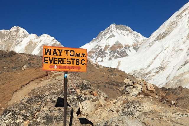 Everest binary options