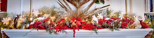 christmas-1155-2