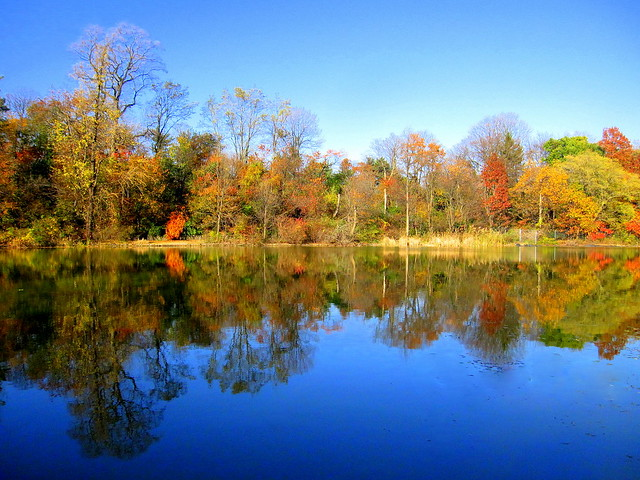 Nice Fall Day | Prospect Park. Brooklyn, New York | By ...
