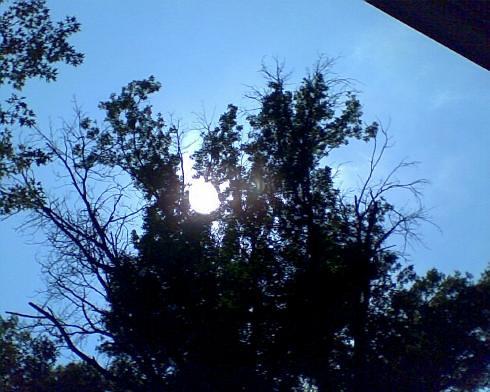 blue sun shadows bluesky sunrises darkshadows peekingsun june2011