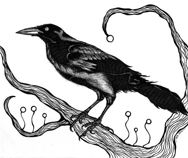 Raven Study (Black & White)