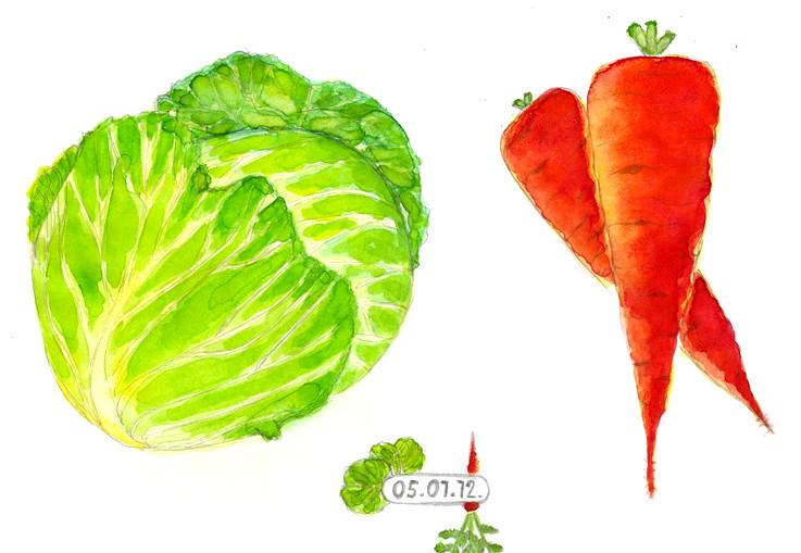 Flash mob vegetables 1.