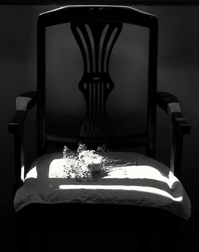 ireland wedding blackandwhite rose chair memorial remembrance inmemoriam greyscale meath sonycybershoth1 carlzeisslens photographybychristopherstrickland