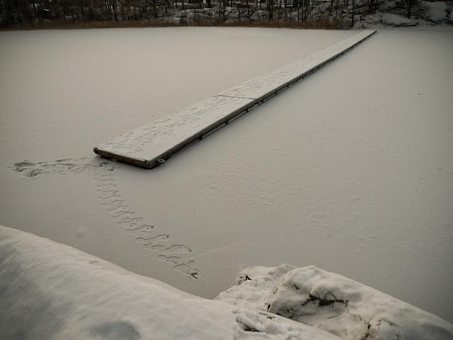 Tveksamma steg på hal is