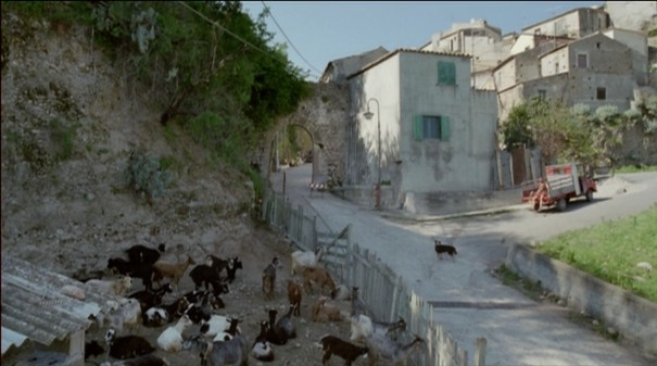 le quattro volte, frammartino, long take, shot of the year, dog