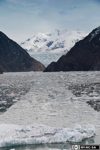 20110505-Alaska2011-D2-DSC_5240.jpg
