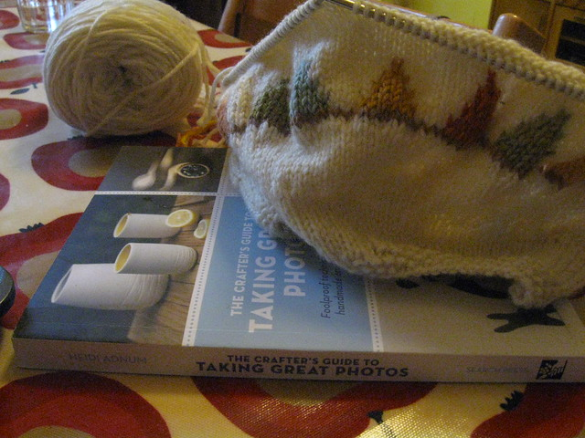 Reading and knitting 18th Jan 2012