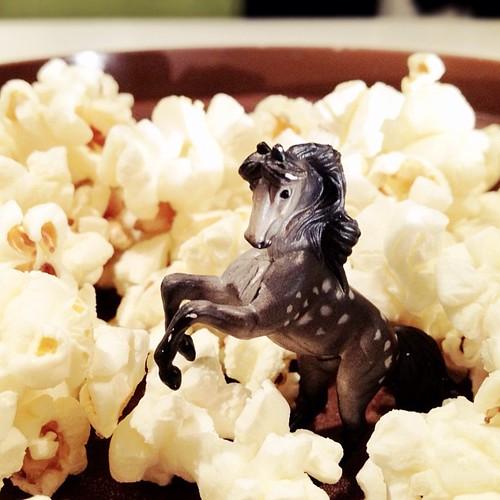 popcorn frolic. #miniwhinnie