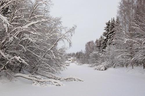winter sky house snow tree finland river landscape branch birch orimattila porvoonjoki