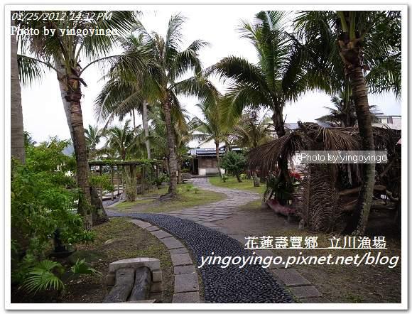 花蓮壽豐_立川漁場20120125_R0050829