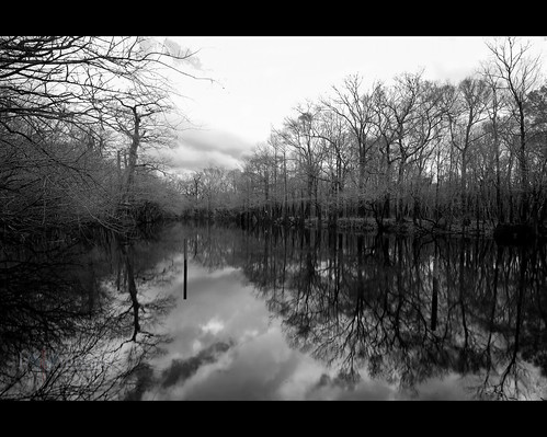 trees winter sky bw usa reflection sc water clouds river landscape pond conway southcarolina waccamaw ndx1000 nikonafsnikkor1635mmf4gedvr