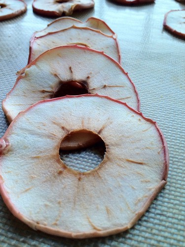 Dried apples 4