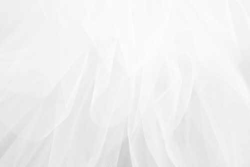 Odette's Feathers