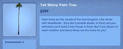 Tall Skinny Palm Tree