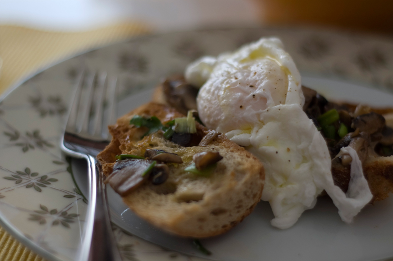 Cogumelos em tosta // Mushroom Toast with a poached egg