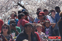 National Cherry Blossom Festival DC - April 12, 2014 by DJ Fusion (FuseBox Radio)