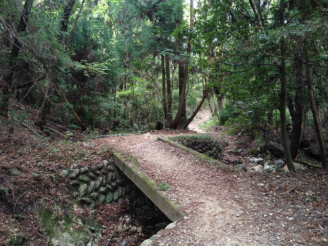 百々ヶ峰 登山道 石橋