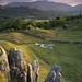 Summer Evening by Michael Paynton
