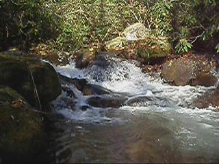 autumn nature water creek river geotagged nc video stream carolina pisgahnationalforest usfs 2011 mystuart