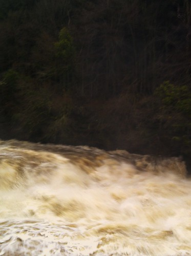 Falls of Clyde at New Lanark