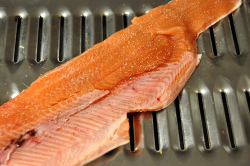 326 - Steelhead Fillet by carolfoasia