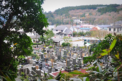 Cementiri prop del llac Ashi