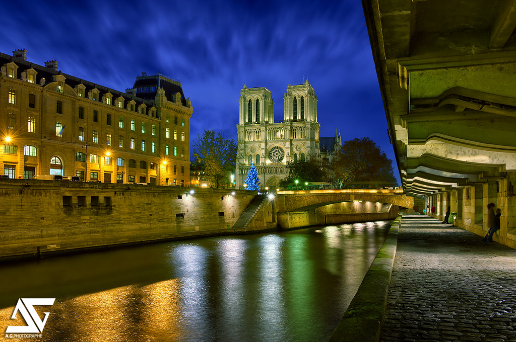 Notre-Dame Christmas Edition