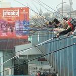 Turkey November/December 2011