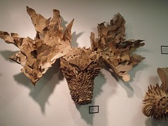 Moose by Teckelcar
