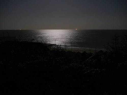 Moonlight Sea Grain