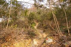福山城跡へ #2