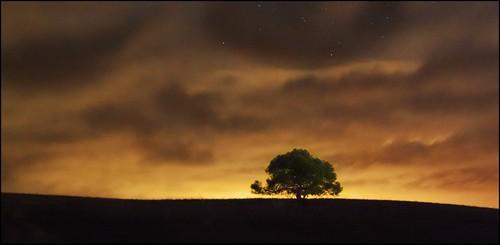 nocturna jerez 2011