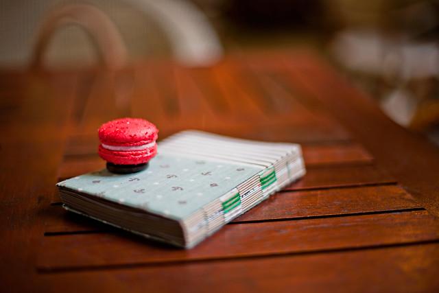 macaron on diary